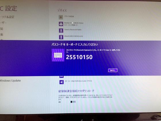 IMG_0984 (560x420)